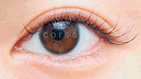 eye-20