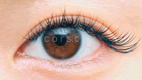 eye-50